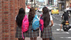 Female Students With Backpacks. Group of Female Students With Backpacks Royalty Free Stock Photography
