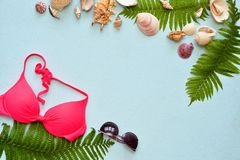 Female summer bikini swimsuit and accessories collage on blue with palm branches, hat and sunglasses. Royalty Free Stock Image