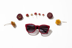 Female  sunglasses. Red sunglasses lie surrounded by flowers on a white background Stock Images
