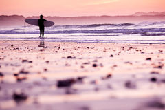 Female surfer. On the beach at the sunset Royalty Free Stock Photo