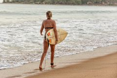 Female surfer walking on the beach. In Arugam Bay, Sri Lanka. Arugam Bay is the hotspot in Sri Lanka and probably one of the best places in the world to surf Stock Photos
