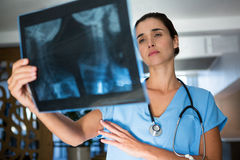 Female surgeon examining an x-ray report Stock Photography