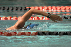 Female swimmer. Athletic woman swimming freestyle with perfect form royalty free stock photo