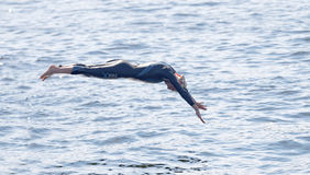Female swimmer diving into the water Royalty Free Stock Images