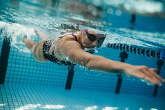 Fit Female Athlete Swimming In Pool Stock Photo Image