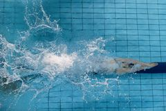 female swimmer, that jumping and diving into indoor sport swimming pool. Sporty woman. stock photography
