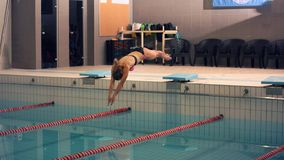 A female swimmer, that jumping and diving into indoor sport swimming pool. Sporty woman. Stock Photo