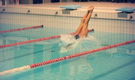 A female swimmer, that jumping and diving into indoor sport swimming pool. Sporty woman. Stock Photos