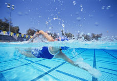 Female swimmer in United States swimsuit swimming in pool stock images