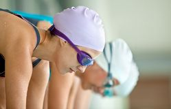 Female swimmers Stock Images