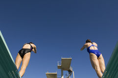 Female Swimmers Diving Together Stock Photos