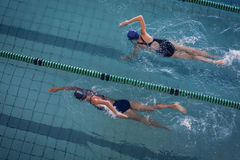 Female swimmers racing in the swimming pool. At the leisure center Royalty Free Stock Image