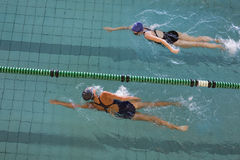 Female swimmers racing in the swimming pool. At the leisure center Royalty Free Stock Images