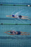 Female swimmers racing in the swimming pool. At the leisure center Stock Image