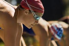 Female swimmers on starting blocks. Bending down Royalty Free Stock Photo