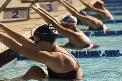 Female Swimmers On Starting Blocks Royalty Free Stock Image