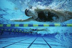 Female Swimmers Swimming. Three young female swimmers swimming during a race Royalty Free Stock Photos