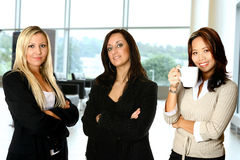 Female team, in office Stock Images