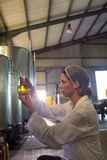 Female technician examining olive oil royalty free stock images