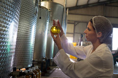 Female technician examining olive oil royalty free stock photography