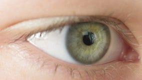 Female teen eye close up, reading Royalty Free Stock Photo
