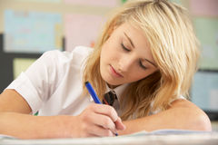 Female Teenage Student Studying Stock Images