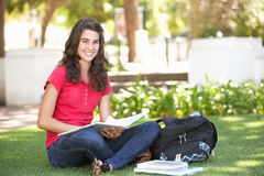 Female Teenage Student Studying In Park Royalty Free Stock Photos