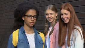 Female teens taunting biracial girl, bullying in schoolyard, racial conflict. Stock footage stock video footage