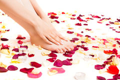 Female tender hands laying on feet Royalty Free Stock Photography