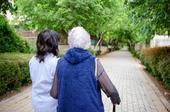 Advanced geriatric psychotherapist strolling with elderly female patient in a green alley royalty free stock photos