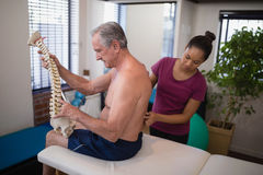 Female therapist examining back of shirtless male patient holding artificial spine Stock Images