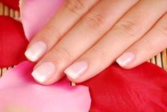 Female toenail. Royalty Free Stock Photo