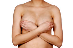 Female torso Stock Image
