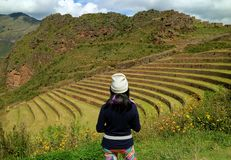 Female tourist admiring the Inca ancient agricultural terraces at Pisac Archaeological Site, Sacred Valley, Peru stock images