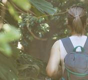 Female tourist. Female tourist with backpack in the jungle. Vintage effect stock photography