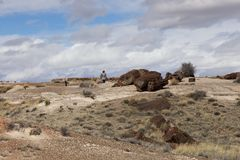 Female tourist and chunks of petrified wood chunks on hill. At the southern part of Petrified Forest National Park in winter, near Holbrook, northeastern stock photo