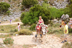 The female tourist on a donkey Royalty Free Stock Photo