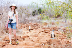 Female tourist at Galapagos islands. Female tourist near blue footed booby at Galapagos island of North Seymour stock photo