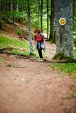 Female tourist hiking in a mountain forest Royalty Free Stock Photo