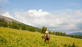Female tourist on horseback Stock Image