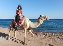 Female tourist with kid rides a  camel Royalty Free Stock Photography