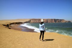 Female Tourist Looking at the Remarkable Landscape of Paracas National Reserve in Ica Region, Peru, South America stock images