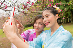 Female tourists girlfriends sightseeing in japan. Female tourists girlfriends to sightseeing in japan full blooming cherry flowers garden and wearing kimono Stock Images