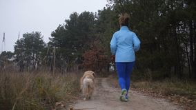 Female trail runner with pet jogging in the wood stock video
