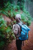Female traveler wearing hood on the road in the mysterious foggy pine forest. Santo Antao Island, Cape Verde royalty free stock photos