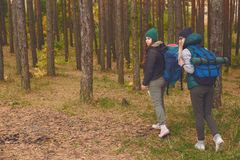 Female travelers from back in the pine forest. royalty free stock photography