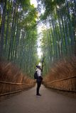 Female traveller girl looking at bamboo forest of Arashiyama wea Royalty Free Stock Images