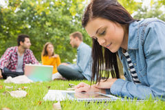 Female using tablet PC while others using laptop in park. Young female using tablet PC while other students using laptop in background at the park Royalty Free Stock Photos