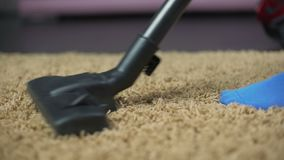 Female vacuuming rug to prevent allergy reaction, removing dirt from carpet. Stock footage stock footage