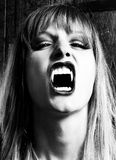 Female vampire showing her fangs. Blonde, female vampire with dangerous expression and open mouth is showing her fangs. Photo was taken in an old Viennese cellar Royalty Free Stock Image